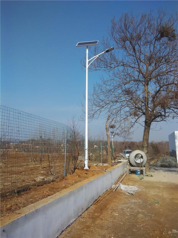 开封太阳能路灯经销商采购后安装的实物样式